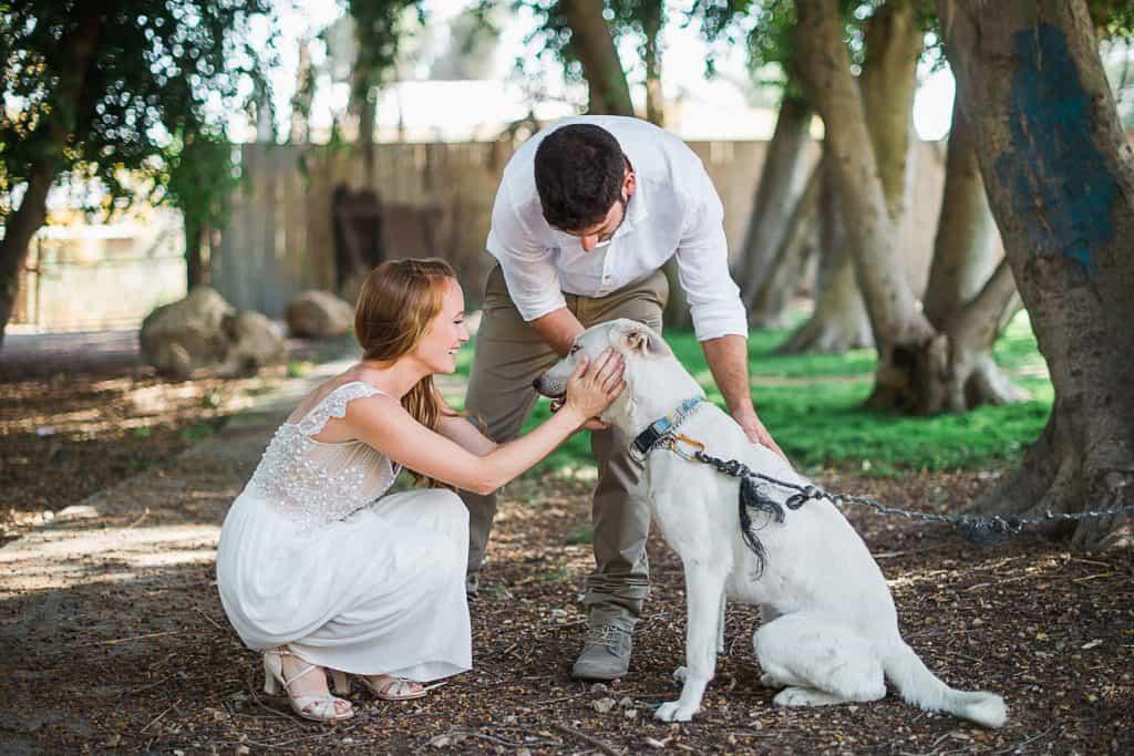 חתונות קיבוץ